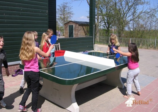 Table de ping-pong verte angles arrondis