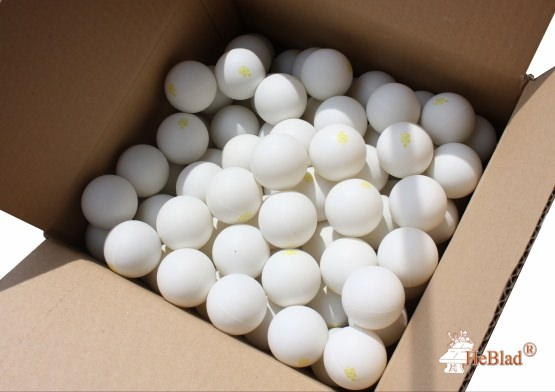 Ping-pong balls available in box of 120