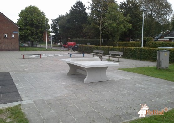 Ping-pong table in natural concrete