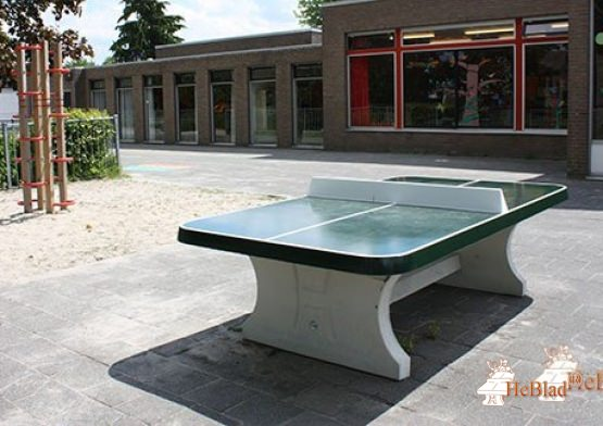 Concrete Ping-pong table green, rounded